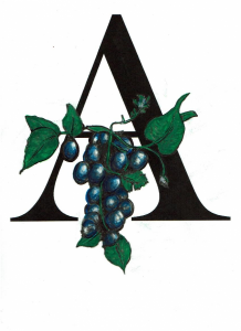 Éditions Archimède_Collection SANTÉ_logo couleurs